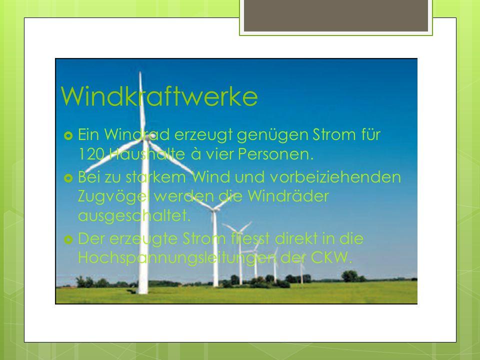Windkraftwerke Ein Windrad erzeugt genügen Strom für 120 Haushalte à vier Personen. Bei zu starkem Wind und vorbeiziehenden Zugvögel werden die Windrä