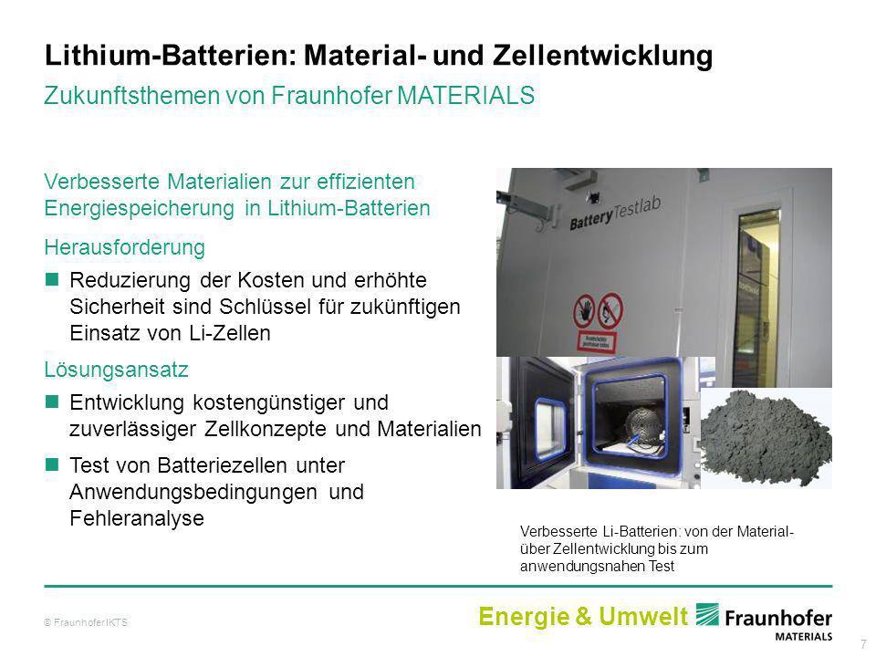 7 Lithium-Batterien: Material- und Zellentwicklung Verbesserte Materialien zur effizienten Energiespeicherung in Lithium-Batterien Herausforderung Red