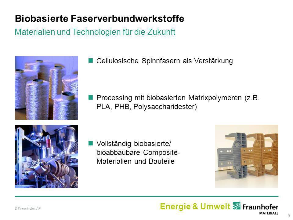 9 Cellulosische Spinnfasern als Verstärkung Processing mit biobasierten Matrixpolymeren (z.B. PLA, PHB, Polysaccharidester) Vollständig biobasierte/ b