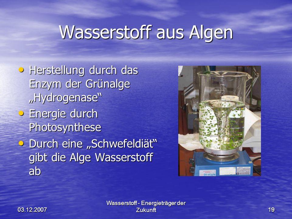 03.12.2007 Wasserstoff - Energieträger der Zukunft19 Wasserstoff aus Algen Herstellung durch das Enzym der Grünalge Hydrogenase Herstellung durch das Enzym der Grünalge Hydrogenase Energie durch Photosynthese Energie durch Photosynthese Durch eine Schwefeldiät gibt die Alge Wasserstoff ab Durch eine Schwefeldiät gibt die Alge Wasserstoff ab