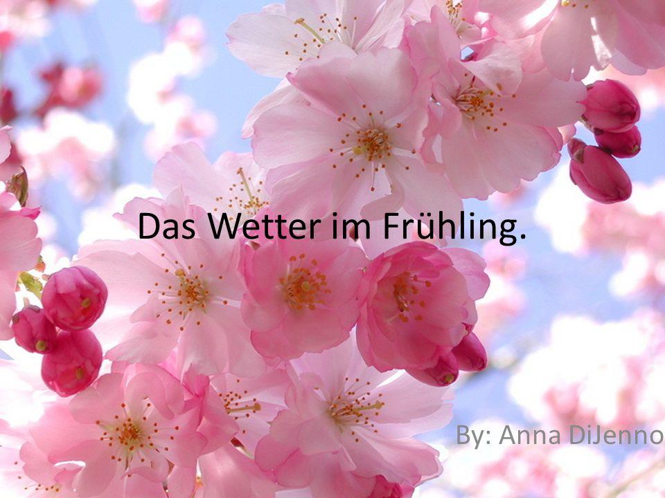 Das Wetter im Frühling. By: Anna DiJenno