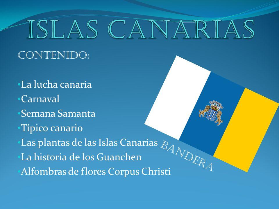 Contenido: La lucha canaria Carnaval Semana Samanta Típico canario Las plantas de las Islas Canarias La historia de los Guanchen Alfombras de flores C