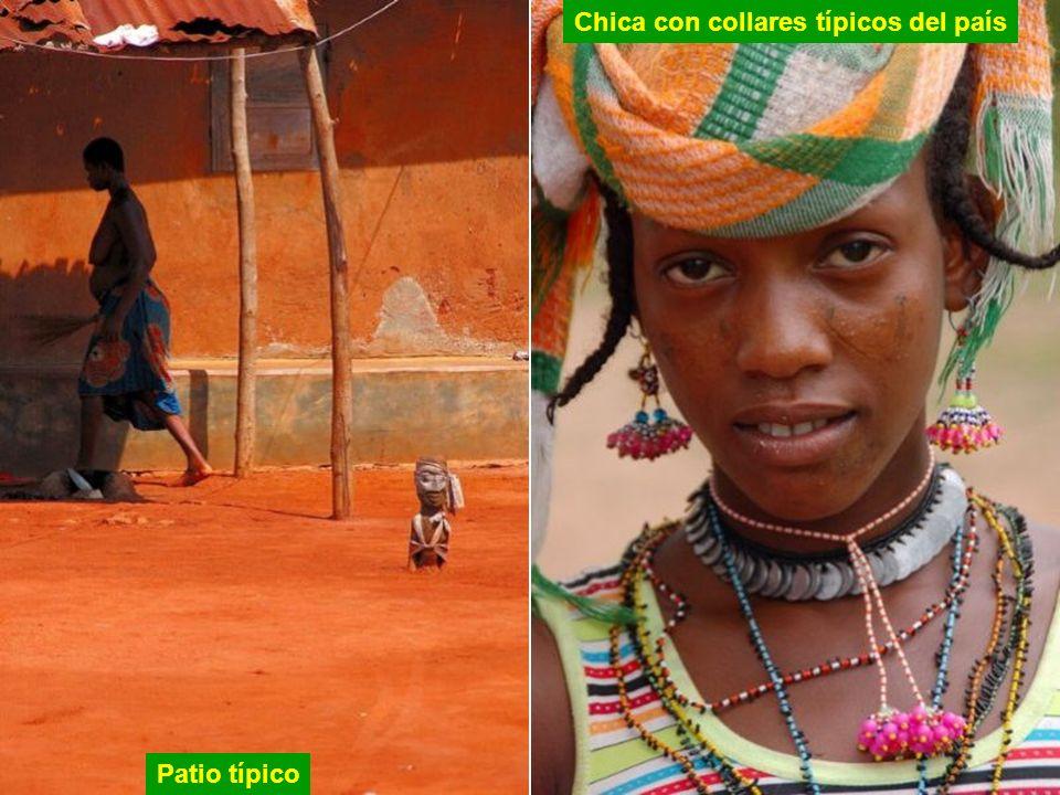 Die Mbororo sind Nomaden bewohnen Fulani dünn besiedelten Gebieten von Benin. Ihre Kultur ist ganz anders als die landwirtschaftlichen Dörfer von Beni