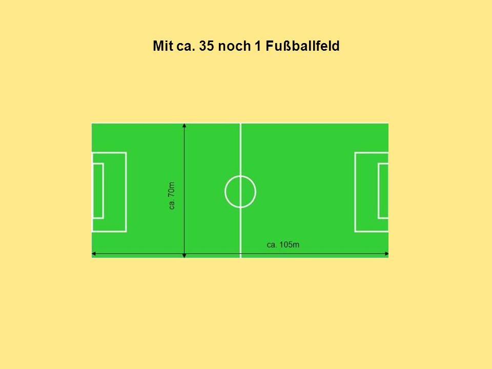 Mit ca. 35 noch 1 Fußballfeld