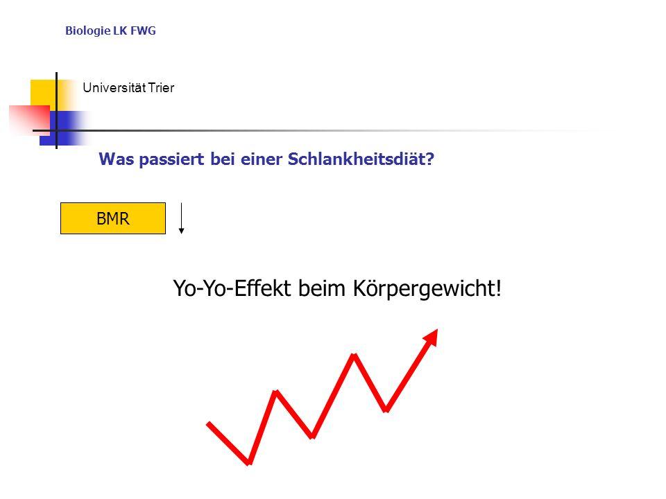 Biologie LK FWG Universität Trier BMR Yo-Yo-Effekt beim Körpergewicht! Was passiert bei einer Schlankheitsdiät?