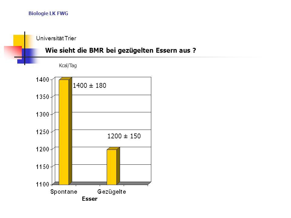 Biologie LK FWG Universität Trier Esser Kcal/Tag 1400 ± 180 1200 ± 150 Wie sieht die BMR bei gezügelten Essern aus ?