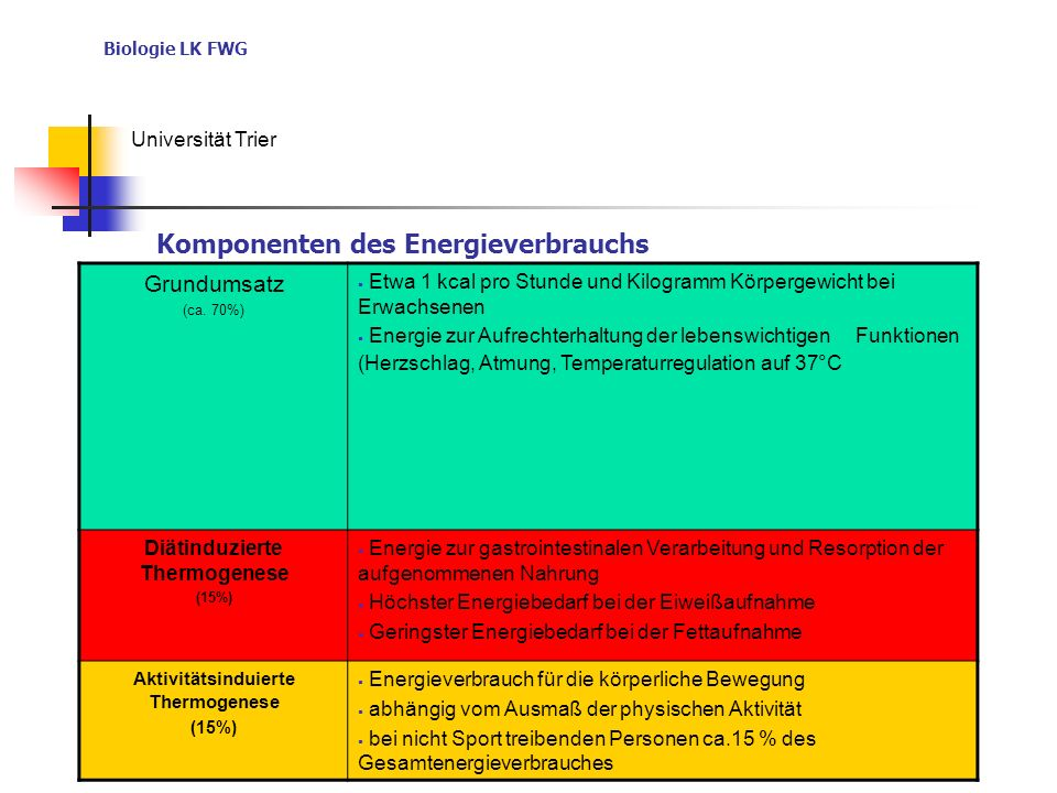 Biologie LK FWG Universität Trier Grundumsatz (ca. 70%) Etwa 1 kcal pro Stunde und Kilogramm Körpergewicht bei Erwachsenen Energie zur Aufrechterhaltu