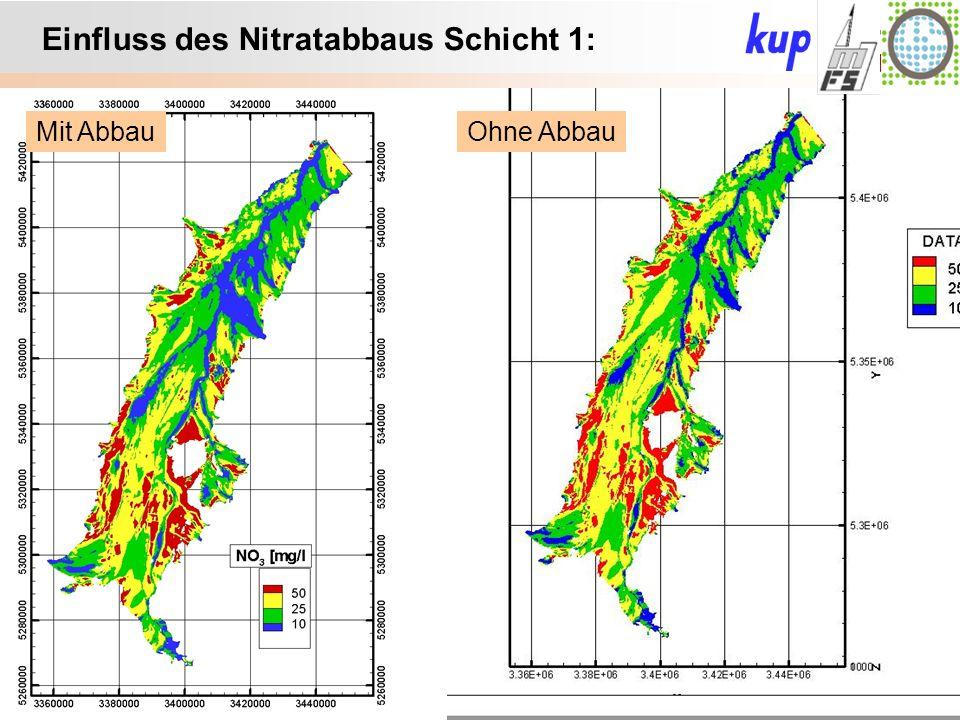 Untersuchungsgebiet: Einfluss des Nitratabbaus Schicht 1: Ohne AbbauMit Abbau