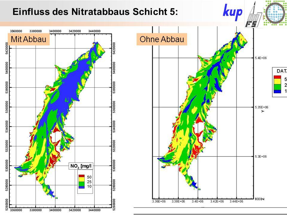 Untersuchungsgebiet: Einfluss des Nitratabbaus Schicht 5: Ohne AbbauMit Abbau