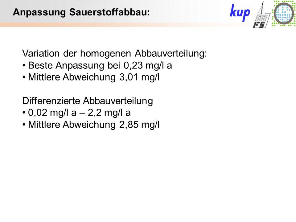 Untersuchungsgebiet: Anpassung Sauerstoffabbau: Variation der homogenen Abbauverteilung: Beste Anpassung bei 0,23 mg/l a Mittlere Abweichung 3,01 mg/l Differenzierte Abbauverteilung 0,02 mg/l a – 2,2 mg/l a Mittlere Abweichung 2,85 mg/l