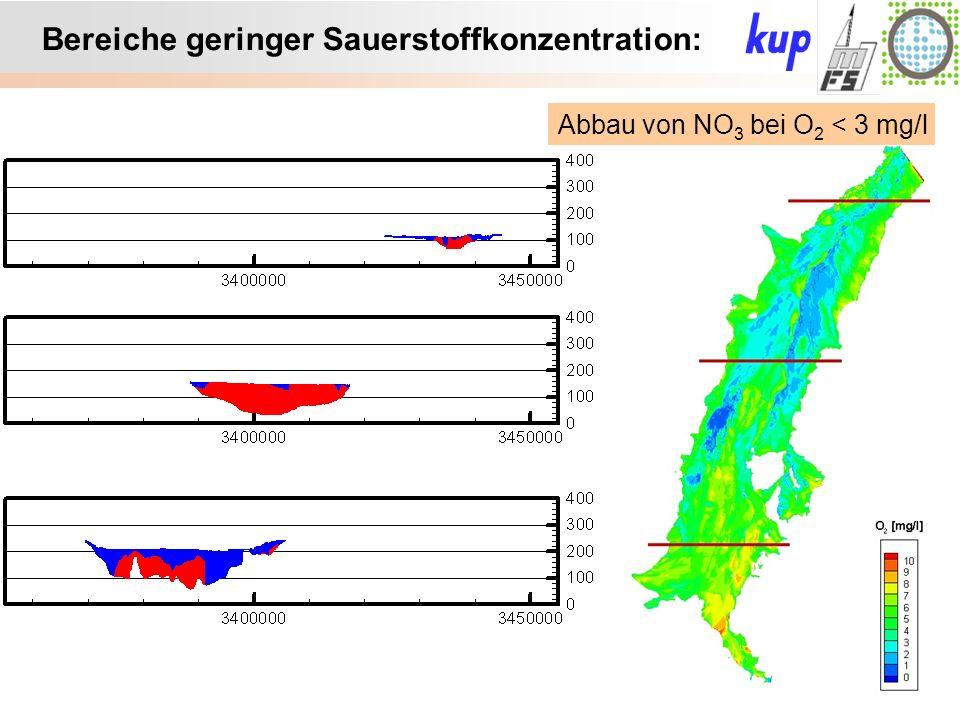 Untersuchungsgebiet: Bereiche geringer Sauerstoffkonzentration: Abbau von NO 3 bei O 2 < 3 mg/l