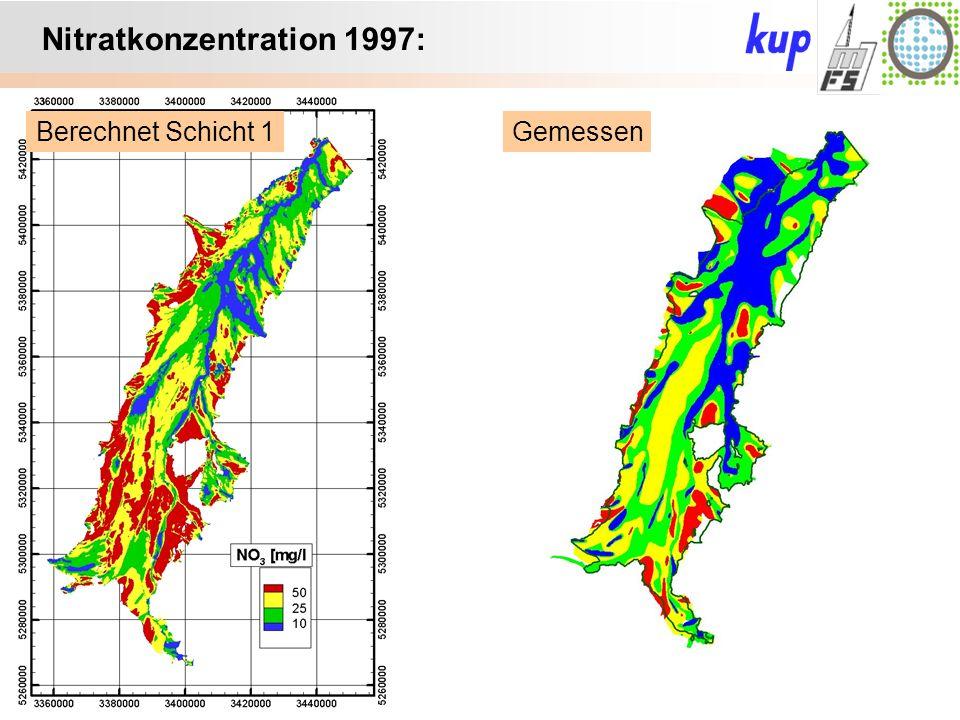 Untersuchungsgebiet: Nitratkonzentration 1997: GemessenBerechnet Schicht 1