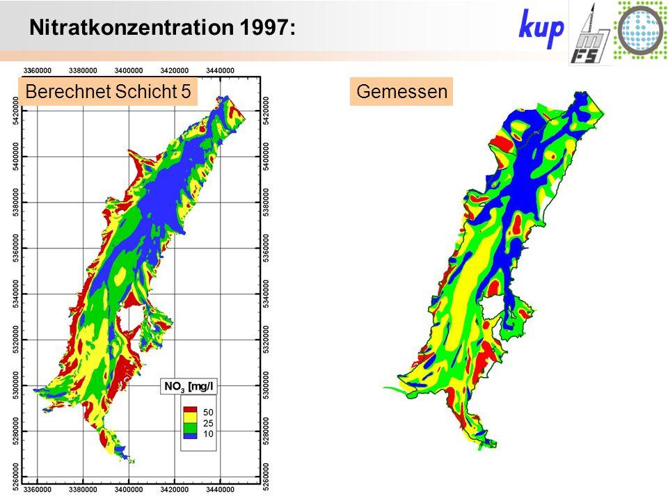 Untersuchungsgebiet: Nitratkonzentration 1997: GemessenBerechnet Schicht 5