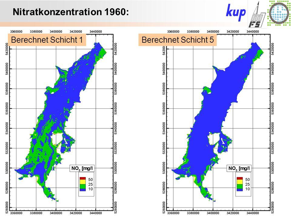 Untersuchungsgebiet: Nitratkonzentration 1960: Berechnet Schicht 5Berechnet Schicht 1