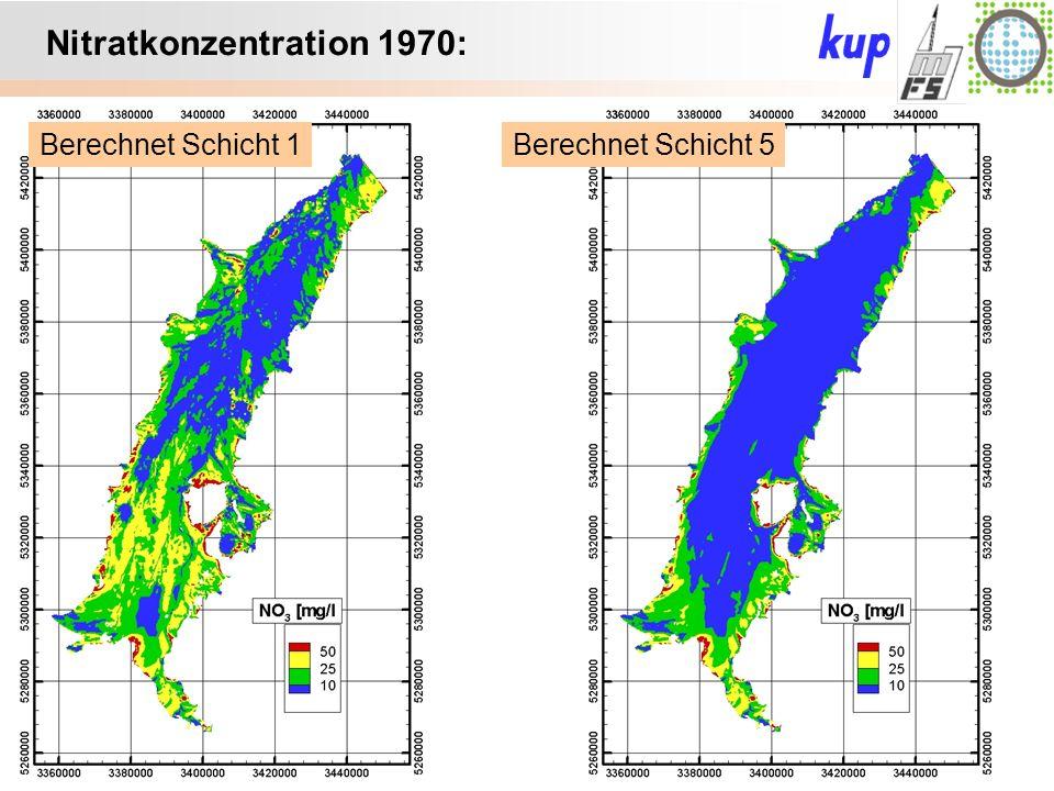 Untersuchungsgebiet: Nitratkonzentration 1970: Berechnet Schicht 5Berechnet Schicht 1