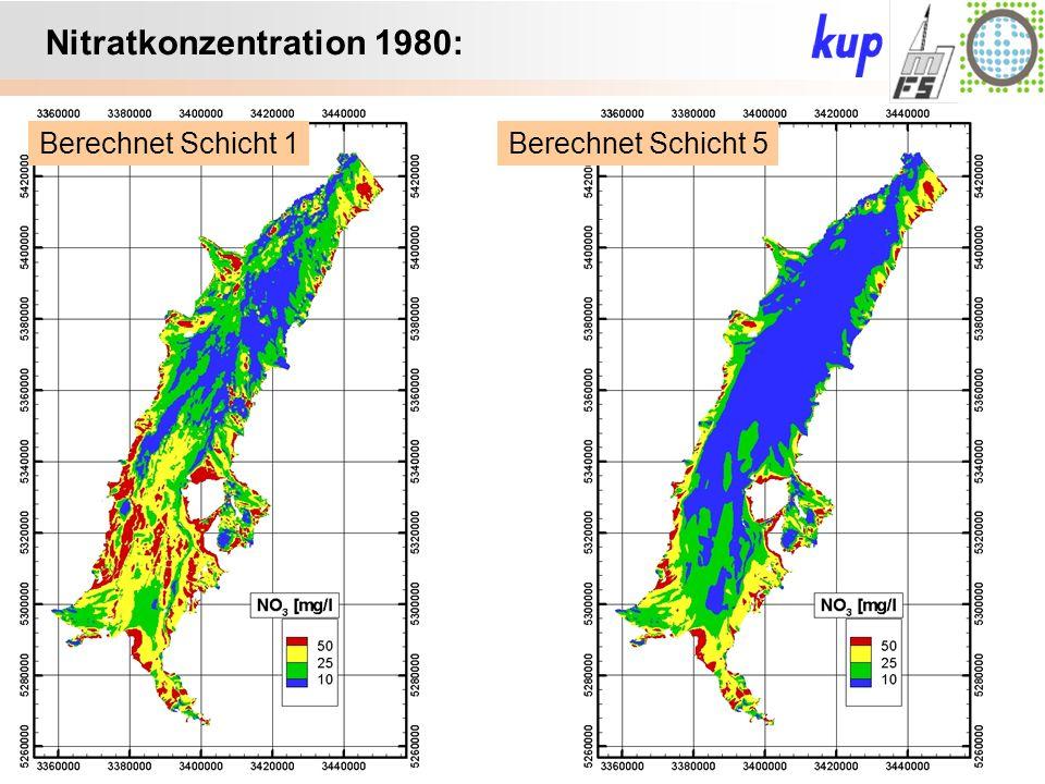 Untersuchungsgebiet: Nitratkonzentration 1980: Berechnet Schicht 5Berechnet Schicht 1
