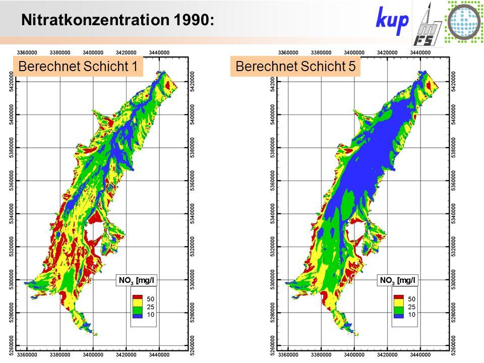 Untersuchungsgebiet: Nitratkonzentration 1990: Berechnet Schicht 5Berechnet Schicht 1