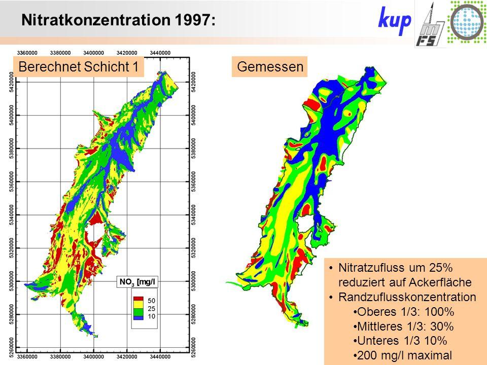 Untersuchungsgebiet: Nitratkonzentration 1997: GemessenBerechnet Schicht 1 Nitratzufluss um 25% reduziert auf Ackerfläche Randzuflusskonzentration Oberes 1/3: 100% Mittleres 1/3: 30% Unteres 1/3 10% 200 mg/l maximal