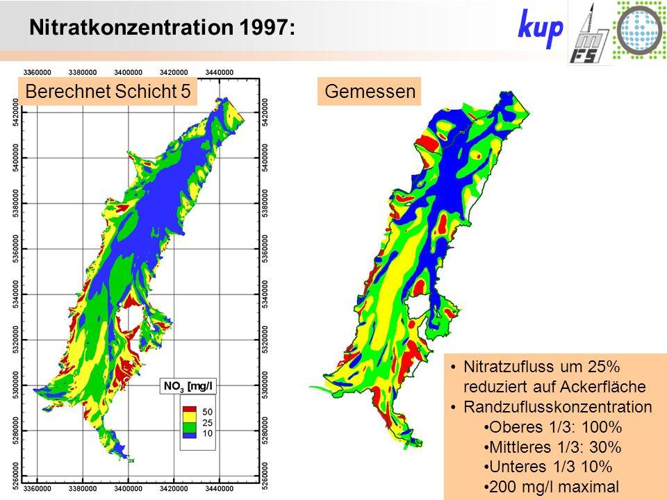 Untersuchungsgebiet: Nitratkonzentration 1997: Berechnet Schicht 5Gemessen Nitratzufluss um 25% reduziert auf Ackerfläche Randzuflusskonzentration Oberes 1/3: 100% Mittleres 1/3: 30% Unteres 1/3 10% 200 mg/l maximal