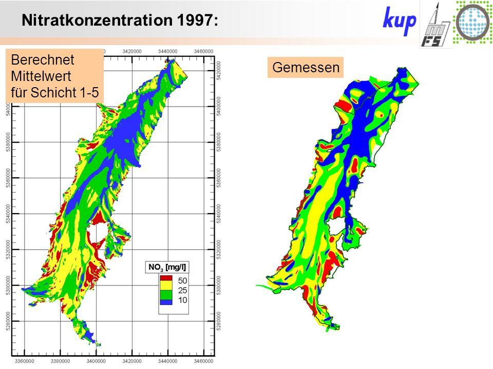 Untersuchungsgebiet: Nitratkonzentration 1997: Berechnet Mittelwert für Schicht 1-5 Gemessen