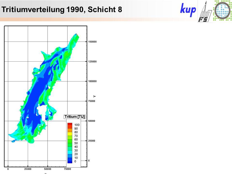 Untersuchungsgebiet: Tritiumverteilung 1990, Schicht 8
