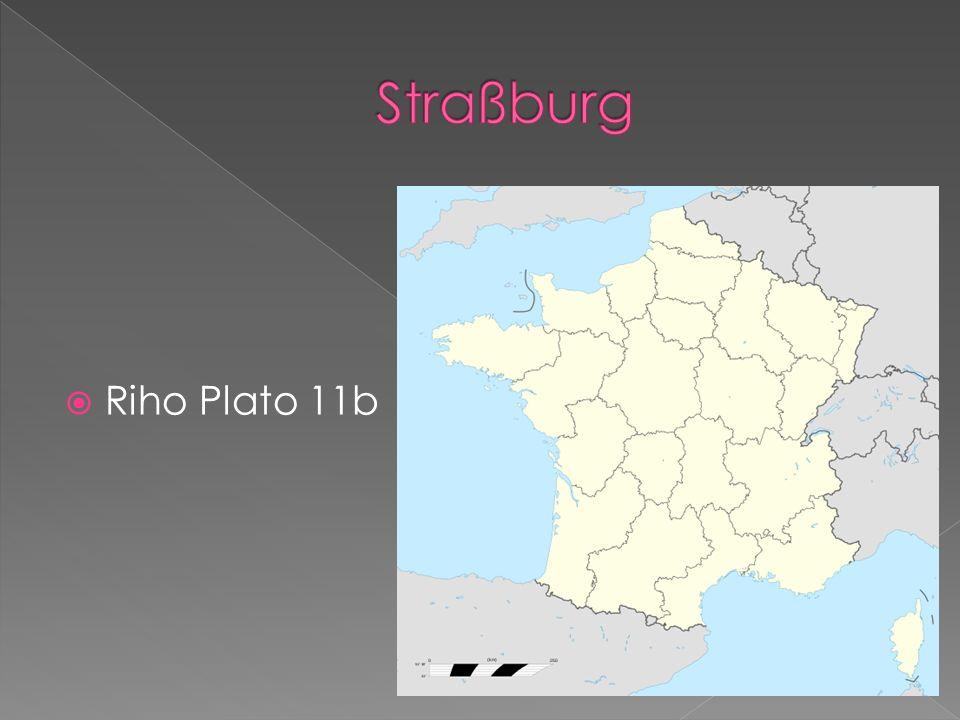 Riho Plato 11b