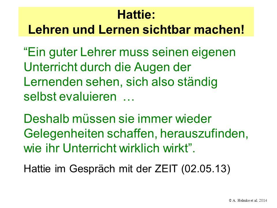 © A. Helmke et al. 2014 Hattie: Lehren und Lernen sichtbar machen! Ein guter Lehrer muss seinen eigenen Unterricht durch die Augen der Lernenden sehen