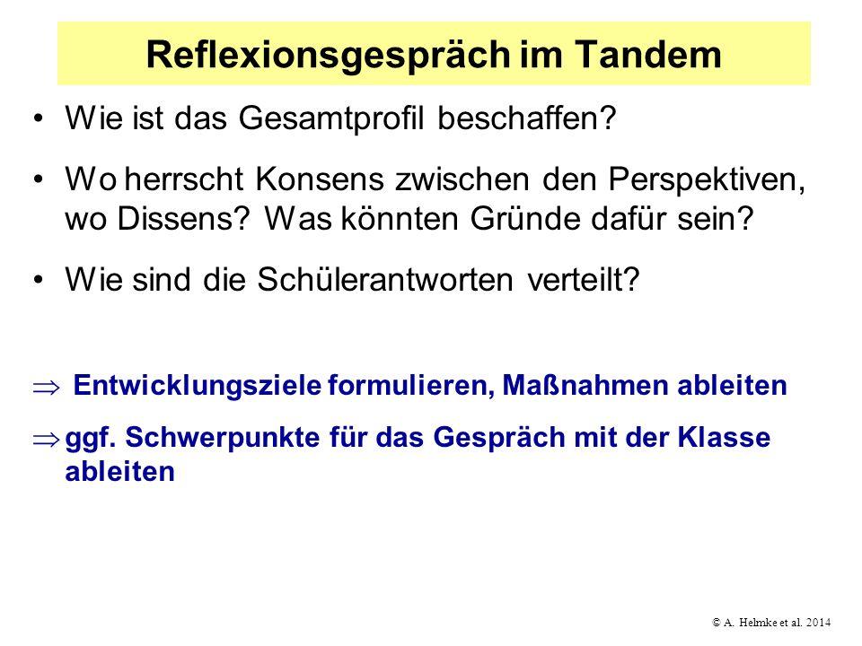 © A. Helmke et al. 2014 Reflexionsgespräch im Tandem Wie ist das Gesamtprofil beschaffen? Wo herrscht Konsens zwischen den Perspektiven, wo Dissens? W