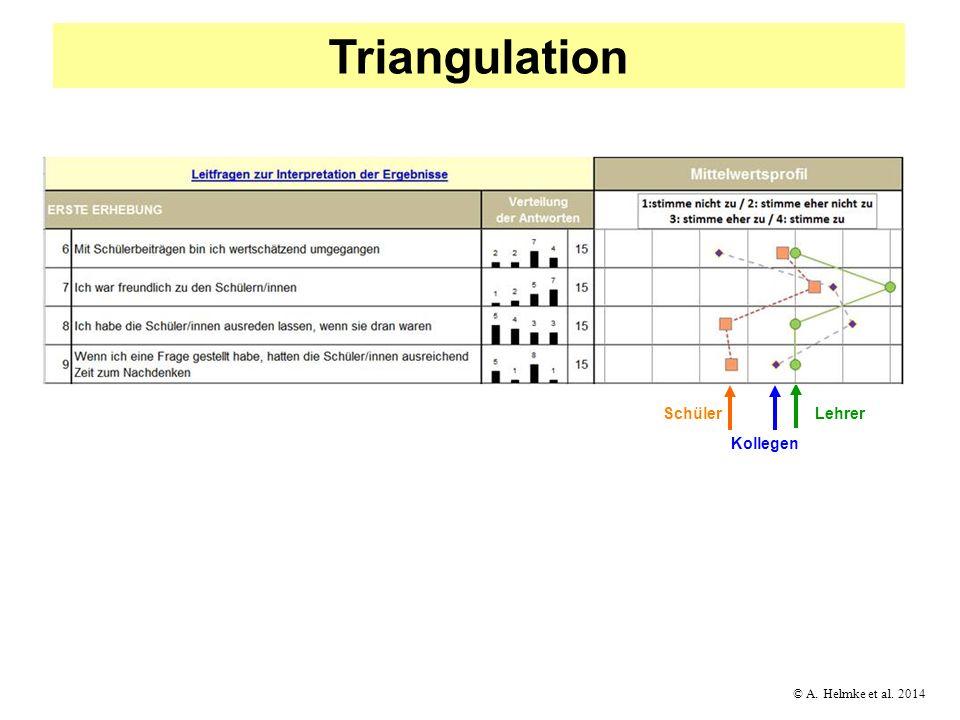 © A. Helmke et al. 2014 Triangulation Kollegen Lehrer Schüler