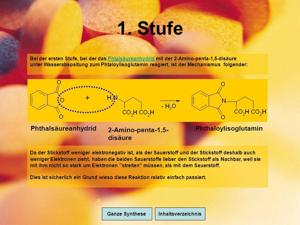 1. Stufe + Phthalsäureanhydrid Phthaloylisoglutamin 2-Amino-penta-1,5- disäure Bei der ersten Stufe, bei der das Phtalsäureanhydrid mit der 2-Amino-pe