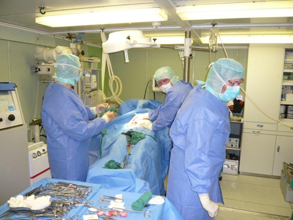 § 19 Beschäftigung angestellter Praxisärztinnen und -ärzte (2) Ärztinnen und Ärzte dürfen nur zu angemessenen Bedingungen beschäftigt werden.