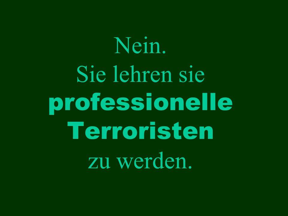 Nein. Sie lehren sie professionelle Terroristen zu werden.