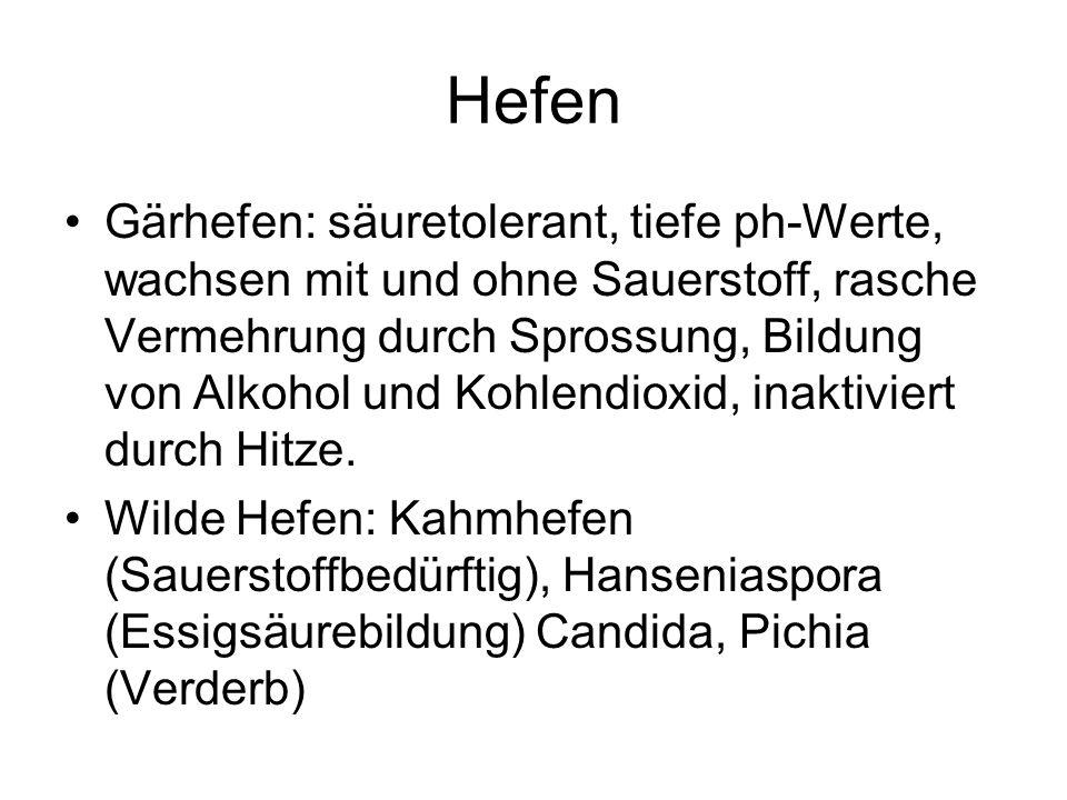 Hefen Gärhefen: säuretolerant, tiefe ph-Werte, wachsen mit und ohne Sauerstoff, rasche Vermehrung durch Sprossung, Bildung von Alkohol und Kohlendioxi