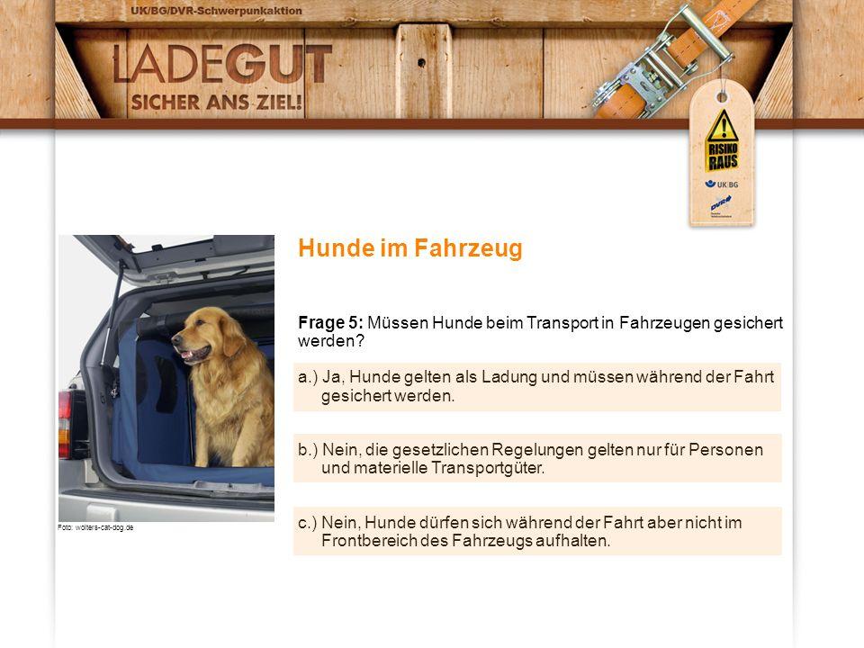 Hunde im Fahrzeug Frage 5: Müssen Hunde beim Transport in Fahrzeugen gesichert werden? a.) Ja, Hunde gelten als Ladung und müssen während der Fahrt ge