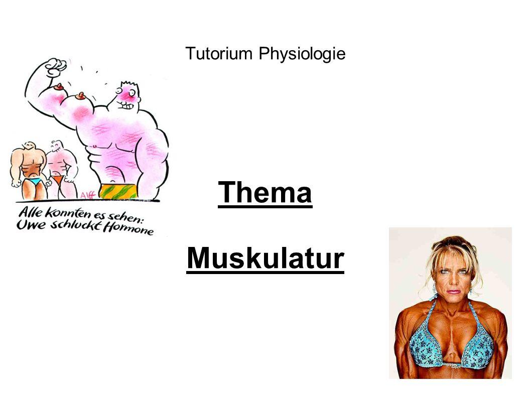 Tutorium Physiologie Thema Muskulatur