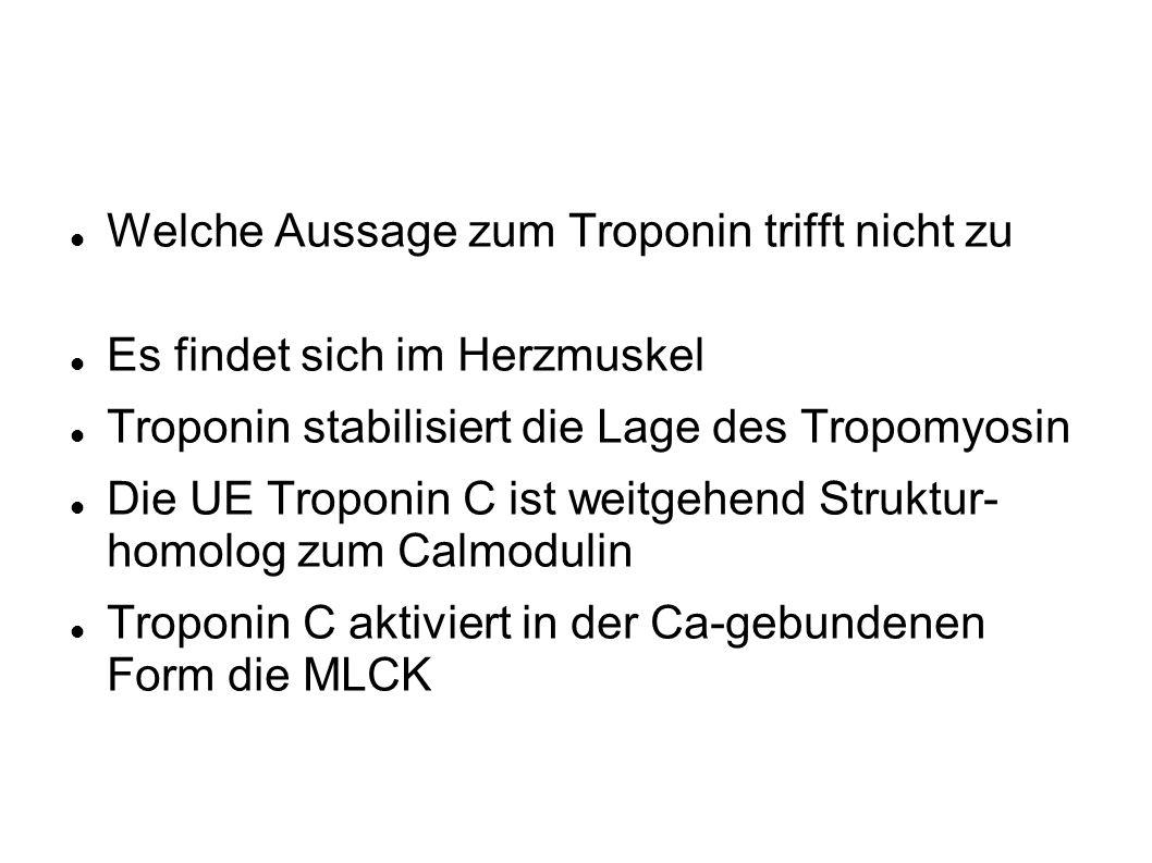 Welche Aussage zum Troponin trifft nicht zu Es findet sich im Herzmuskel Troponin stabilisiert die Lage des Tropomyosin Die UE Troponin C ist weitgehend Struktur- homolog zum Calmodulin Troponin C aktiviert in der Ca-gebundenen Form die MLCK