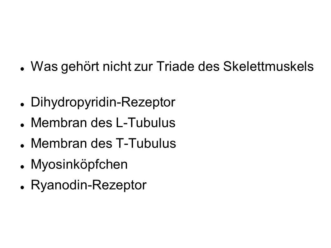 Was gehört nicht zur Triade des Skelettmuskels Dihydropyridin-Rezeptor Membran des L-Tubulus Membran des T-Tubulus Myosinköpfchen Ryanodin-Rezeptor