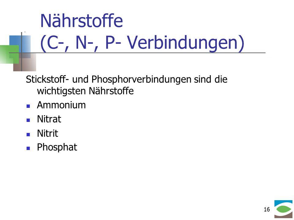 16 Nährstoffe (C-, N-, P- Verbindungen) Stickstoff- und Phosphorverbindungen sind die wichtigsten Nährstoffe Ammonium Nitrat Nitrit Phosphat