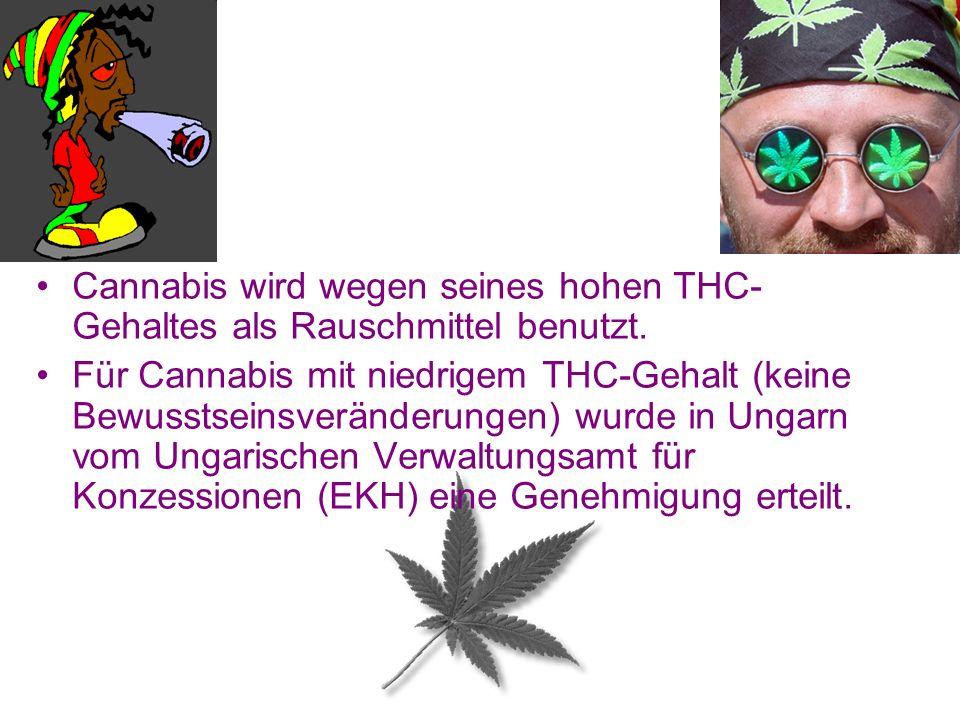 Cannabis wird wegen seines hohen THC- Gehaltes als Rauschmittel benutzt. Für Cannabis mit niedrigem THC-Gehalt (keine Bewusstseinsveränderungen) wurde