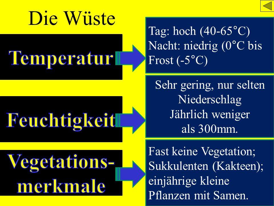 Die Wüste Tag: hoch (40-65°C) Nacht: niedrig (0°C bis Frost (-5°C) Sehr gering, nur selten Niederschlag Jährlich weniger als 300mm. Fast keine Vegetat