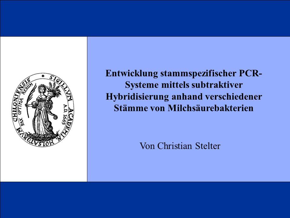 Entwicklung stammspezifischer PCR- Systeme mittels subtraktiver Hybridisierung anhand verschiedener Stämme von Milchsäurebakterien Von Christian Stelt