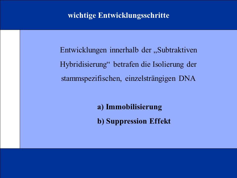 wichtige Entwicklungsschritte Entwicklungen innerhalb der Subtraktiven Hybridisierung betrafen die Isolierung der stammspezifischen, einzelsträngigen DNA a) Immobilisierung b) Suppression Effekt