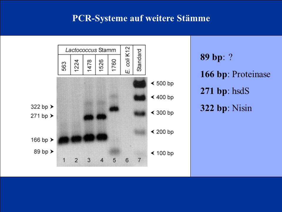 PCR-Systeme auf weitere Stämme 89 bp:? 166 bp: Proteinase 271 bp: hsdS 322 bp: Nisin