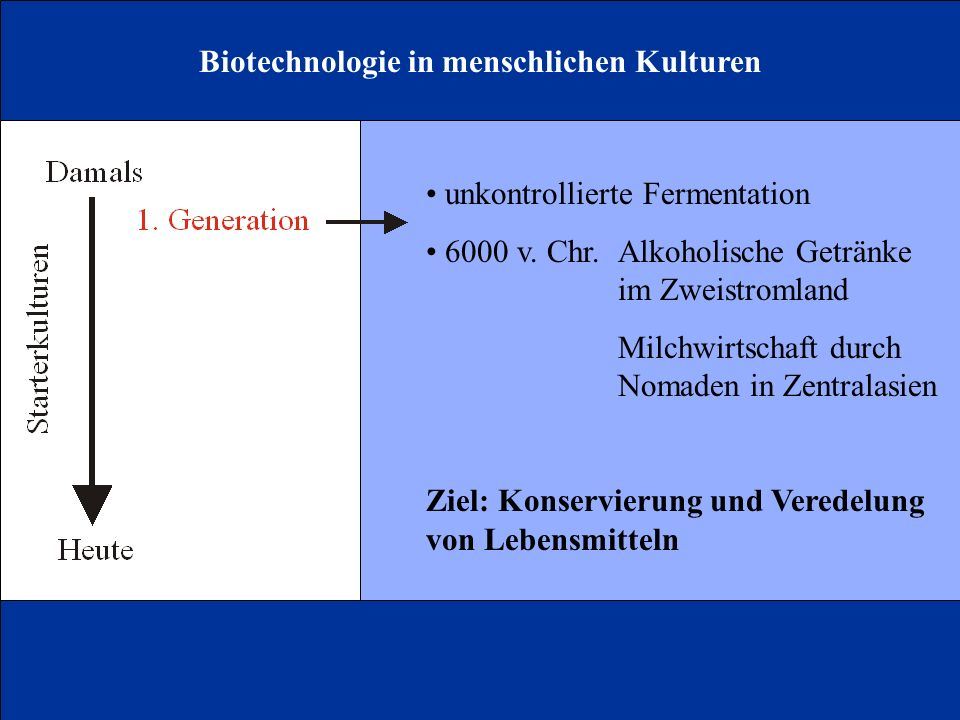 Biotechnologie in menschlichen Kulturen unkontrollierte Fermentation 6000 v. Chr.Alkoholische Getränke im Zweistromland Milchwirtschaft durch Nomaden