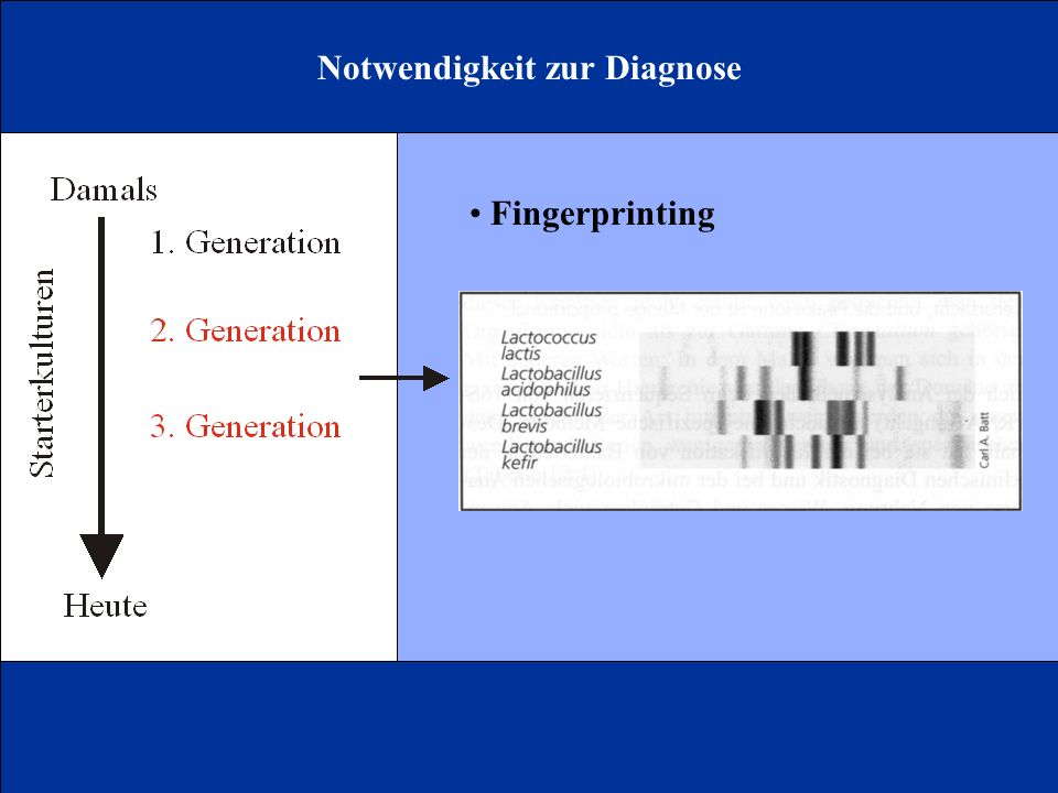 Notwendigkeit zur Diagnose Fingerprinting