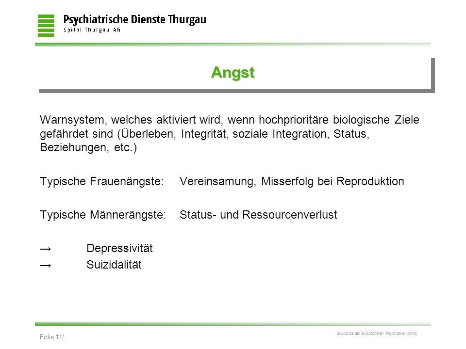 Folie 11/ Grundriss der evolutionären Psychiatrie (Kn/ib) AngstAngst Warnsystem, welches aktiviert wird, wenn hochprioritäre biologische Ziele gefährd