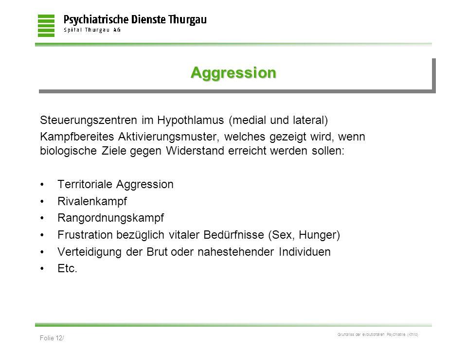 Folie 12/ Grundriss der evolutionären Psychiatrie (Kn/ib) AggressionAggression Steuerungszentren im Hypothlamus (medial und lateral) Kampfbereites Akt