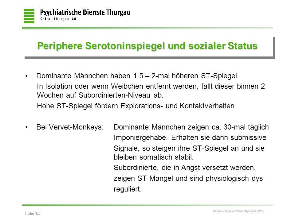 Folie 13/ Grundriss der evolutionären Psychiatrie (Kn/ib) Periphere Serotoninspiegel und sozialer Status Dominante Männchen haben 1.5 – 2-mal höheren