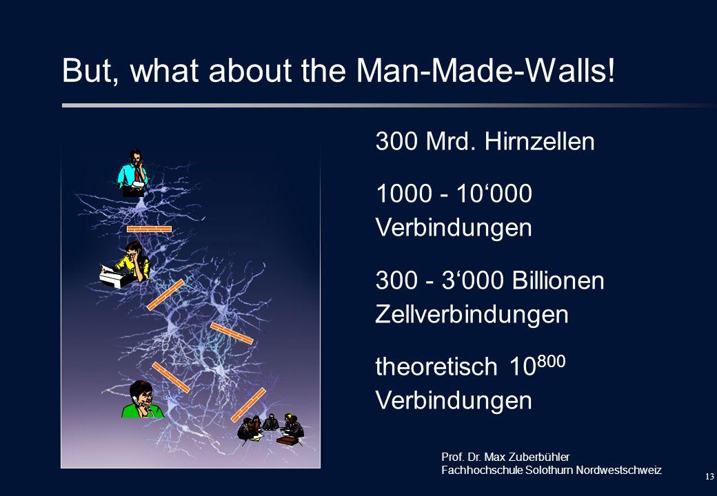12 Alles Billionäre ! 300 Mrd. Hirnzellen 1000 - 10000 Verbindungen 300 - 3000 Billionen Zellverbindungen theoretisch 10 800 Verbindungen Prof. Dr. Ma