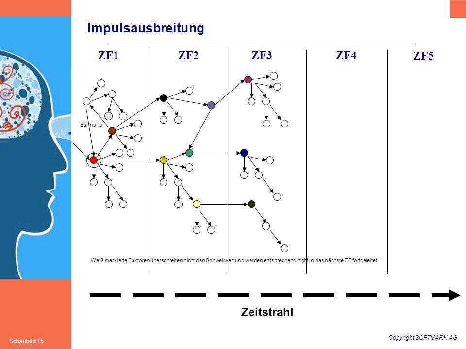 Copyright SOFTMARK AG Schaubild 15 Impulsausbreitung Zeitstrahl ZF1ZF2ZF3ZF4 ZF5 Bahnung Weiß markierte Faktoren überschreiten nicht den Schwellwert u